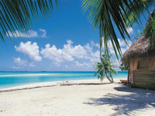 tropical vista3