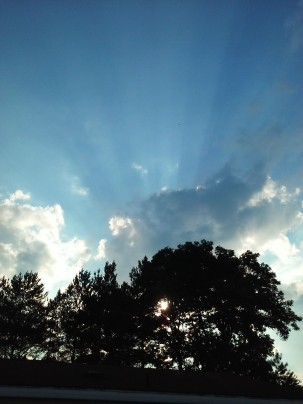 Sunrays1